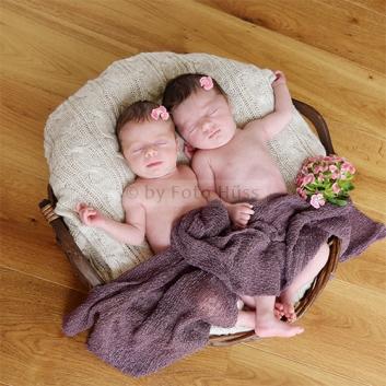 Foto Hüss - Portrait - Baby - Newborn - Zwillinge